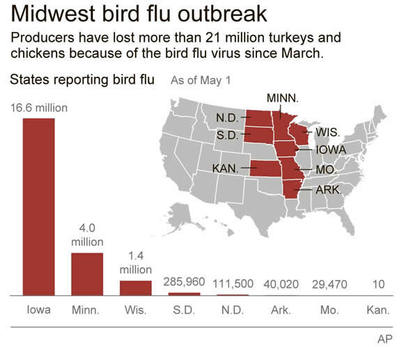 3-Iowa-Governor-Declares-State-Of-Emergency-Due-To-Bird-Flu-Outbreak